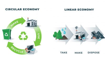 The Circular Economy – occupations and careers to save the planet – part 1