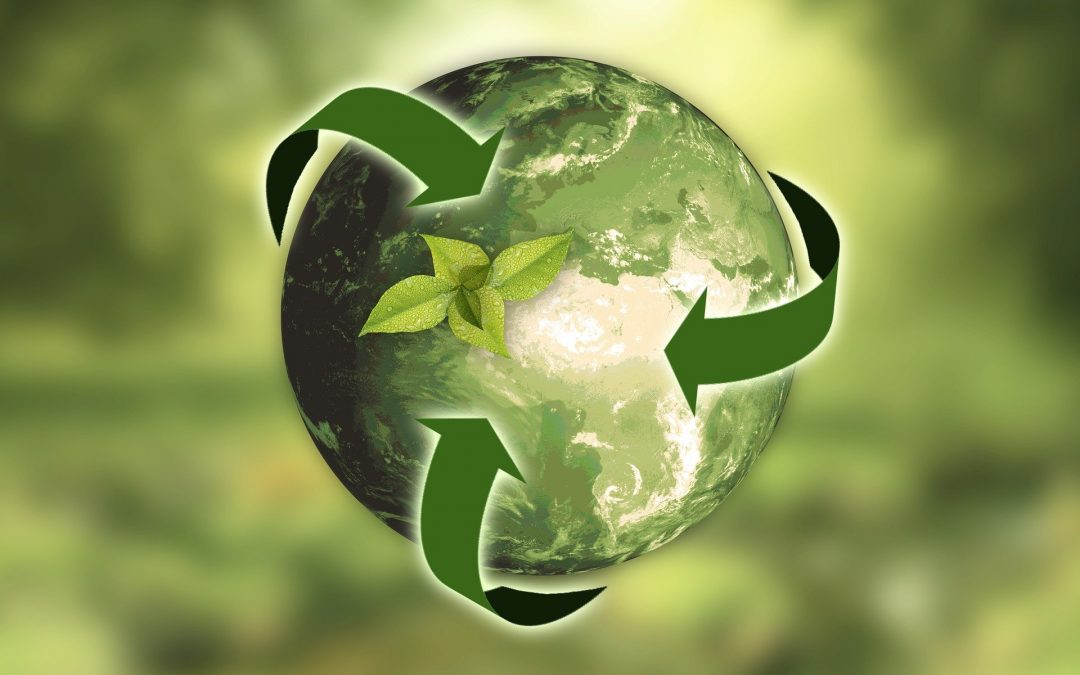 The Circular Economy – occupations and careers to save the planet – part 2